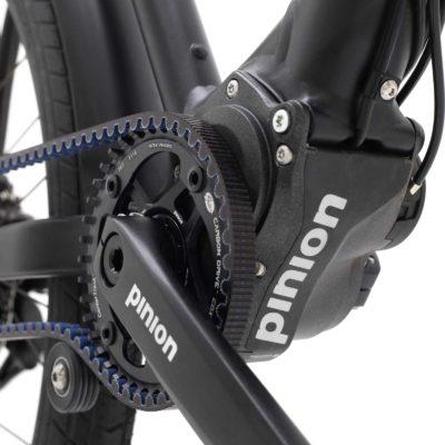 De Pinion versnellingsbak in een Santos Frame